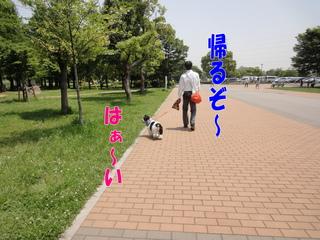 DSC02404-2.jpg