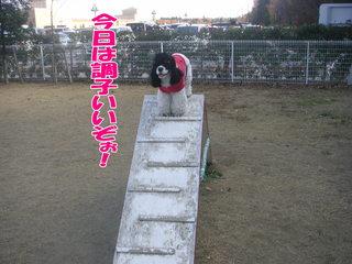 PICT0038-2.jpg