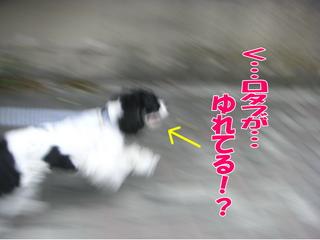 PICT0046-2.jpg