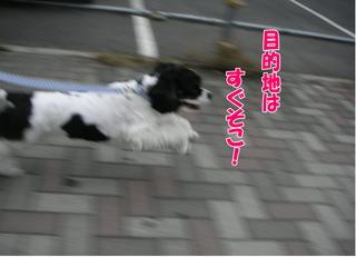 PICT0047-2.jpg