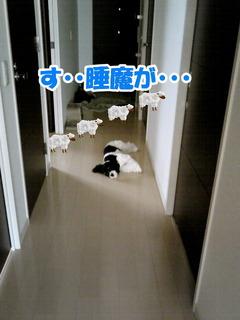 NEC_0611-2.jpg