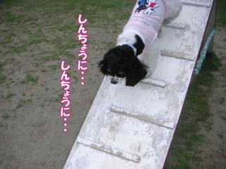 PICT0016-2.jpg